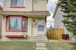 Photo 41: 307 FALTON Drive NE in Calgary: Falconridge Detached for sale : MLS®# C4238621
