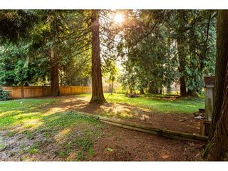 """Photo 36: 3625 208 Street in Langley: Brookswood Langley House for sale in """"Brookswood"""" : MLS®# R2496320"""