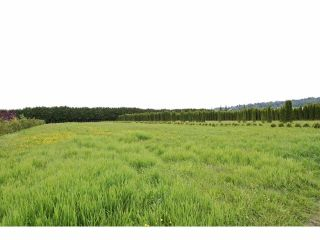 """Photo 11: 7200 216TH Street in Langley: Willoughby Heights Land for sale in """"Milner"""" : MLS®# F1411651"""