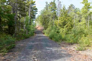 Photo 8: Lots St. Phillips Street in Bridgewater: 405-Lunenburg County Commercial  (South Shore)  : MLS®# 202115971