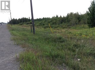 Photo 4: 4360 Regional Road 35 in Chelmsford: Vacant Land for sale : MLS®# 2063882