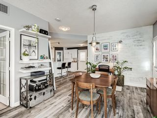 Photo 11: 103 1401 Centre A Street NE in Calgary: Crescent Heights Apartment for sale : MLS®# A1100205