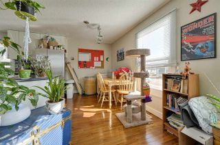 Photo 15: 15216 94 Street in Edmonton: Zone 02 House for sale : MLS®# E4239810