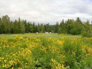 Photo 5: 2084 Saratoga Rd in Black Creek: CV Merville Black Creek Mixed Use for sale (Comox Valley)  : MLS®# 861904