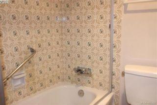 Photo 10: 203 935 Fairfield Rd in VICTORIA: Vi Fairfield West Condo for sale (Victoria)  : MLS®# 805706