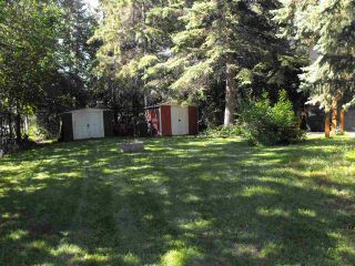 Photo 38: 5218 Ravine Drive: Elk Point House for sale : MLS®# E4209227
