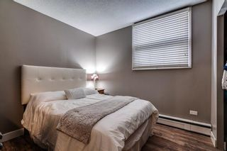 Photo 9: 102 1027 Cameron Avenue SW in Calgary: Lower Mount Royal Apartment for sale : MLS®# A1058522