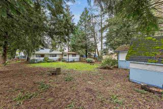 Photo 21: 13288 65A Avenue in Surrey: West Newton House for sale : MLS®# R2557429