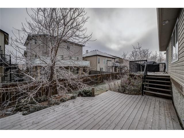 Photo 45: Photos: 137 COVE Court: Chestermere House for sale : MLS®# C4090938