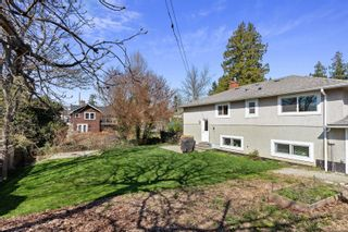 Photo 27: 3588 Savannah Ave in : SE Quadra House for sale (Saanich East)  : MLS®# 872628