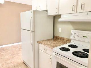 Photo 4: 324 15105 121 Street in Edmonton: Zone 27 Condo for sale : MLS®# E4239504