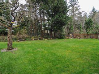 Photo 59: 1006 Anderton Rd in COMOX: CV Comox (Town of) House for sale (Comox Valley)  : MLS®# 726020