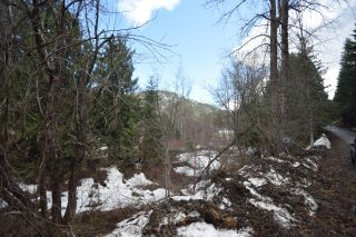 Photo 6: Lots 9&10 2ND AVENUE in Ymir: Vacant Land for sale : MLS®# 2453913