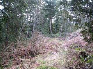 Photo 6: Lot 4 Stevenson Rd in SHAWNIGAN LAKE: ML Shawnigan Land for sale (Malahat & Area)  : MLS®# 566583