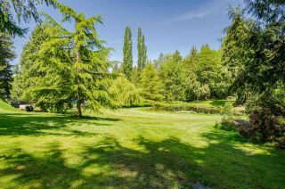 Photo 29: 4788 232 Street in Langley: Salmon River House for sale : MLS®# R2577895