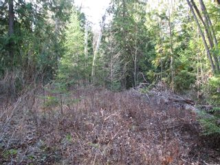 Photo 8: Lot 1 Trans Canada Hwy: Sorrento Land Only for sale (Shuswap)  : MLS®# 10171991