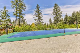 """Photo 19: 20885 0 Avenue in Langley: Campbell Valley House for sale in """"Campbell Valley"""" : MLS®# R2242565"""