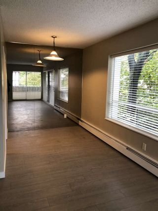 Photo 10: 302 1412 W 14TH AVENUE in Vancouver West: Home for sale : MLS®# R2312905