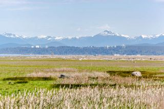 Photo 3: 3220 WILLIAMS Road in Richmond: Steveston North House for sale : MLS®# R2070066