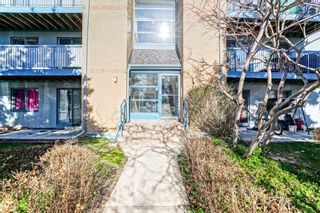 Photo 3: 1021 95 Trailwood Drive in Mississauga: Hurontario Condo for lease : MLS®# W4984485