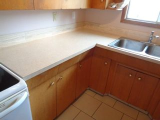 Photo 10: 4630 116 Avenue in Edmonton: Zone 23 House for sale : MLS®# E4237862
