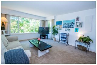 Photo 33: 1650 Southeast 15 Street in Salmon Arm: Hillcrest House for sale (SE Salmon Arm)  : MLS®# 10139417