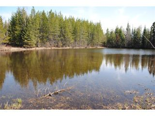 """Photo 6: 5350 SEABROOKE PIT Road in Quesnel: Quesnel - Rural North House for sale in """"TEN MILE LAKE"""" (Quesnel (Zone 28))  : MLS®# N214729"""