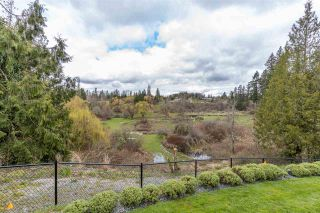 """Photo 34: 7887 227 Crescent in Langley: Fort Langley House for sale in """"Forest Knolls"""" : MLS®# R2561927"""