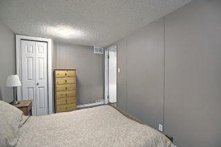 Photo 31: 10933 150 Street in Edmonton: Zone 21 House for sale : MLS®# E4251858