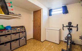 Photo 43: 3509 105 Street Street NW in Edmonton: Zone 16 House for sale : MLS®# E4239908