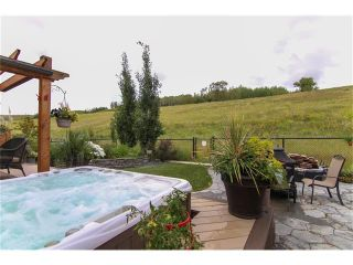 Photo 38: 100 CHAPARRAL VALLEY Terrace SE in Calgary: Chaparral House for sale : MLS®# C4086048