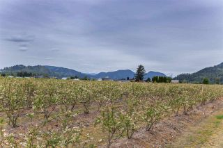 Photo 34: 36509 LOUGHEED Highway in Mission: Dewdney Deroche House for sale : MLS®# R2572923