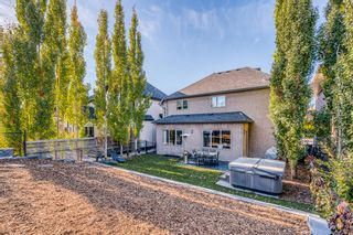 Photo 3: 162 Discovery Ridge Way SW in Calgary: Discovery Ridge Detached for sale : MLS®# A1153200