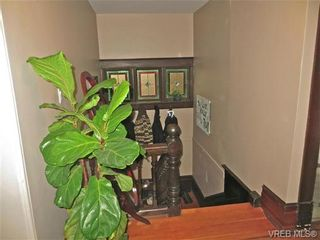 Photo 9: 1083 Redfern St in VICTORIA: Vi Fairfield East House for sale (Victoria)  : MLS®# 690622