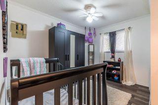Photo 13: 21096 PENNY Lane in Maple Ridge: Southwest Maple Ridge House for sale : MLS®# R2223067