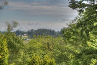 Photo 10: 6628 Rey Rd in : CS Tanner House for sale (Central Saanich)  : MLS®# 851705