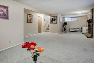 Photo 23: 11331 Coventry Boulevard NE in Calgary: Coventry Hills Detached for sale : MLS®# A1047521