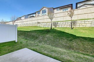 Photo 35: 166 PANTEGO Lane NW in Calgary: Panorama Hills Row/Townhouse for sale : MLS®# A1110965