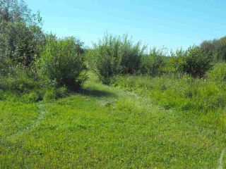 Photo 4: 541043 Hwy 881: Rural Two Hills County House for sale : MLS®# E4214894