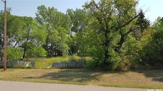 Photo 3: LOTS 10, 11, 12 - Findlater in Findlater: Lot/Land for sale : MLS®# SK871865