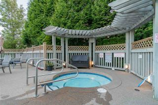 Photo 20: 42 6747 203 Street in Langley: Willoughby Heights Townhouse for sale : MLS®# R2369966