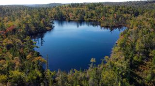 Photo 4: 2014 Myra Road in Porters Lake: 31-Lawrencetown, Lake Echo, Porters Lake Vacant Land for sale (Halifax-Dartmouth)  : MLS®# 202125407