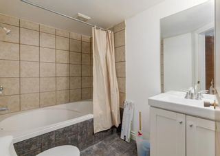 Photo 23: 253 Bedford Circle NE in Calgary: Beddington Heights Semi Detached for sale : MLS®# A1102604