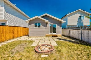 Photo 35: 87 Applebrook Circle SE in Calgary: Applewood Park Detached for sale : MLS®# A1132043