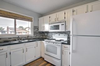 Photo 11: 155 Templevale Road NE in Calgary: Temple Detached for sale : MLS®# A1119165
