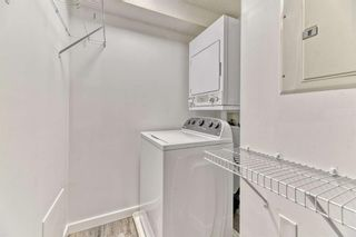 Photo 19: 337 1717 60 Street SE in Calgary: Red Carpet Apartment for sale : MLS®# A1067174