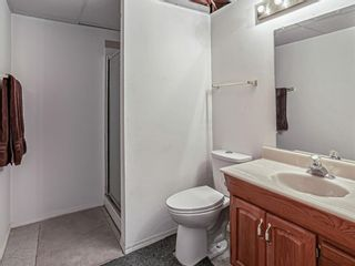 Photo 21: 908 6 Street SE: High River Detached for sale : MLS®# A1122473