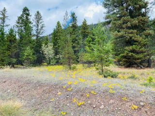 Photo 7: 9621 TRANQUILLE CRISS CRK ROAD in Kamloops: Red Lake Lots/Acreage for sale : MLS®# 164124