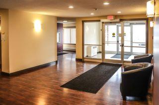 Photo 7: 316 2229 44 Avenue in Edmonton: Zone 30 Condo for sale : MLS®# E4234308