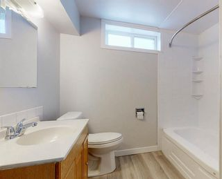 Photo 27: 3807 49 Street NE in Calgary: Whitehorn Detached for sale : MLS®# A1066626